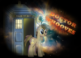 Through Time and Space...Doctor Whooves! by MaNdAmZz