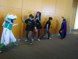 Nekocon pictures 37 by dogo987