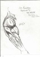 Arm musculature Experiment by moose-lee