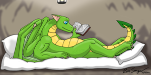 Duncan The Literate Dragon by Ross-Sanger