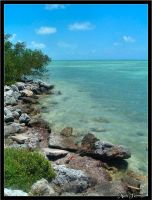 South Florida - Florida Keys 3 by AnimaSoucoyant
