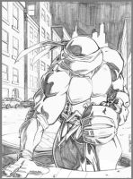 Ninja Turtle by jamesq
