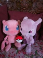 Mew and Mewtwo...... by davyjonesentei123