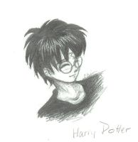 -Harry-Potter-erm-thingie- by chalchihuitlicue