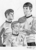 McCoy, Kirk and Spock by stickopotamu