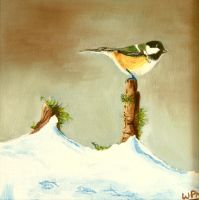Great tit in the snow by WendyMitchell