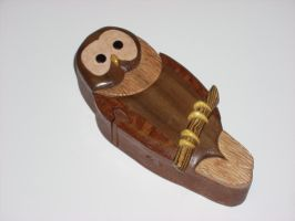 Owl puzzlebox by DMSscroller