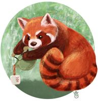 Red Panda Pouring Tea by blackunicorn