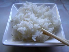 Rice ... by chop-stock