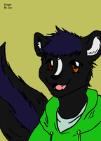 Skunk face by Draconian12