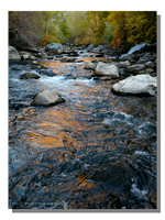 Provo River Reflecting Evening Light by WillFactorMedia