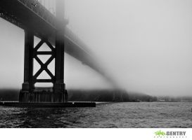 Into the Fog by TopherGentry