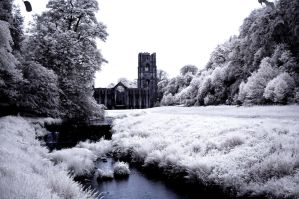 Fountains Abbey 1 by Liam-diamond