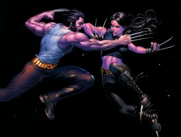 Wolverine Vs X23 by dammpa