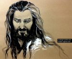Thorin by evankart