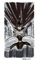 Batman001 by soulshadow