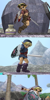 TP Young Link Colorations by Steelia