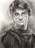 Harry Potter GOF by Callista1981