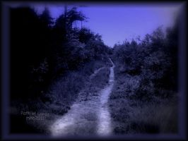 Path of Lords by MagicBlanche