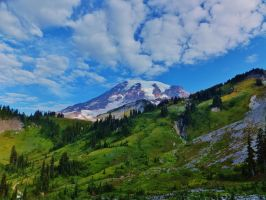 Mt. Rainier Fall Fall 2012 by bootlacephotography