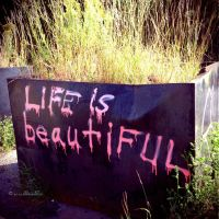 Life is Beautiful by BlastedFen