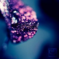 Purple Droplet by HeartDriven