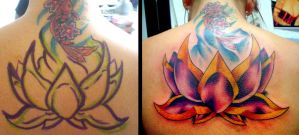 Lotus flower by john2dope