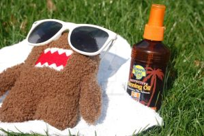 a domo vacation by breannajestat
