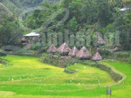 Native Ifugao Hut by lambsfoot