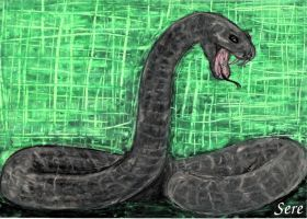 The Snake by simplySere