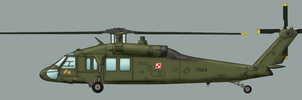 Polish Black Hawk by Jeremak-J