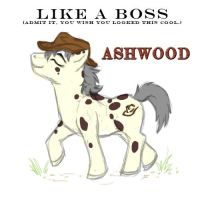 Ashwood the Brony by Kesomon