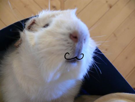 Mustachio by jjrcyber2006