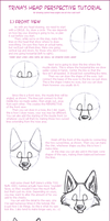 Head Perspective Tutorial by trinacobrajet