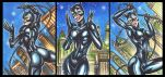 CATWOMAN PFEIFFER PERSONAL SKETCH CARDS by AHochrein2010