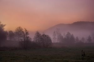 Foggy Pink Sunrise by joscon29