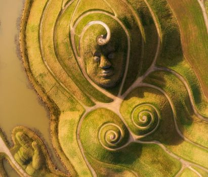 Northumberlandia by scotto