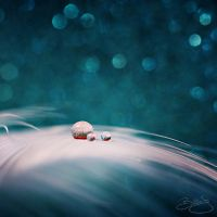 Small Worlds by billiejolm