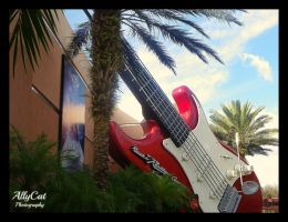 Rock'n Roller Coaster by AllyCat1994