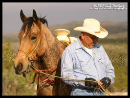 This Cowboy's Horse by octagonalstar