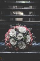 You left me flowers... by ShutterPerspective