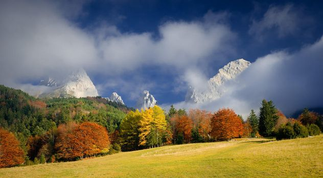 Colors of fall by vincentfavre
