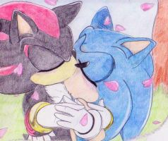 Sonadow in the flower rain by Amortem-kun