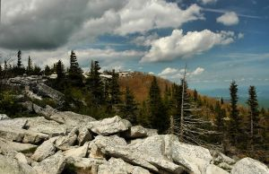 Dolly Sods II by TimLaSure