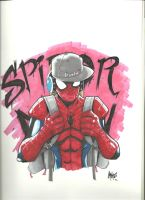 Spraycan Spiderman he aint no toy by RuKuS403