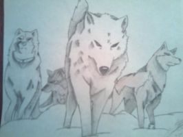 Wolfs Rain by Sora-Key-Bearer