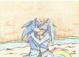 Sonic and Rainbow Dash on the Beach by ChrisTheCat26