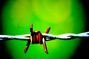 Rusty Barbed Wire by Iansmadhouse