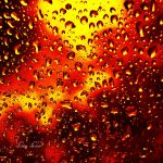 and I set fire to the rain by LuizaLazar