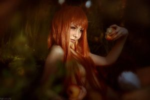 Spice and Wolf - Horo by MilliganVick